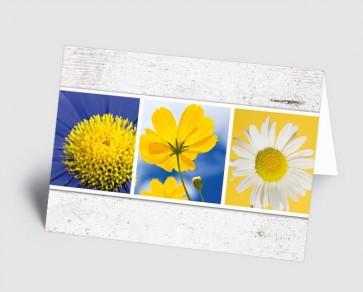 Grusskarte 1519108 MultiPicture