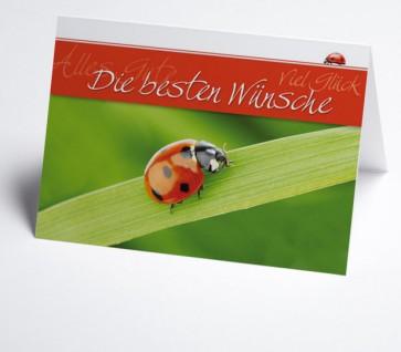 Grusskarte 150986-112 Marienkäfer