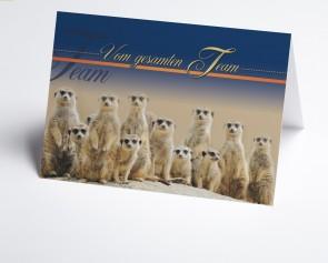 Grusskarte 150907-112 lustige Erdmännchen
