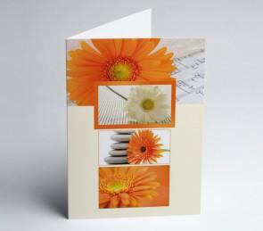 Grusskarte 150989 -112 Gerbera Blüten